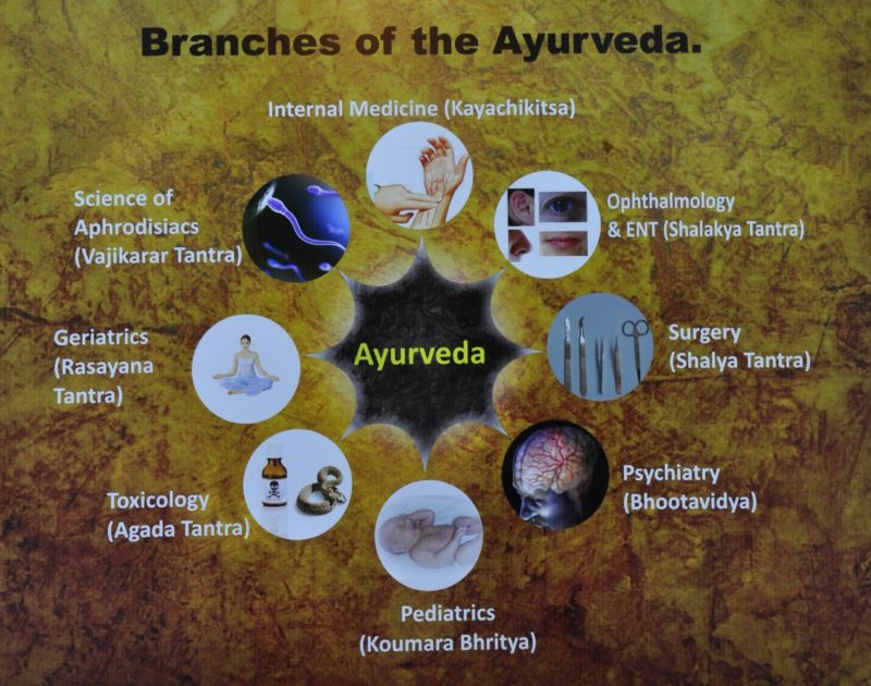 Ayurveda medicine emphasizes balance and moderation