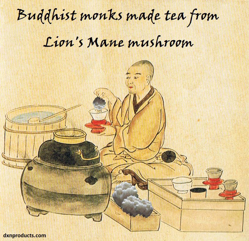 Lion's Mane tea gave buddhist monks enhanced brain power.