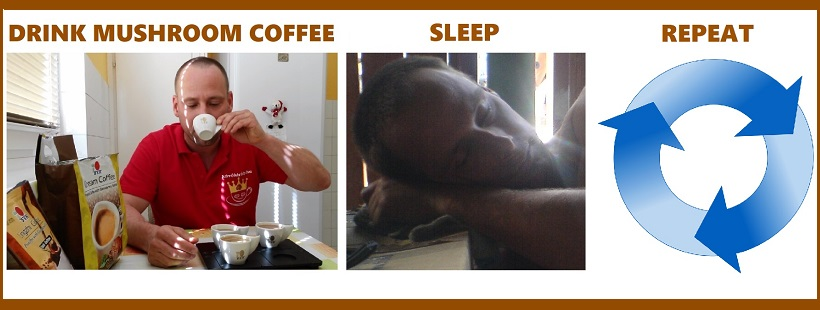 Drink DXN Ganoderma coffee, sleep, repeat