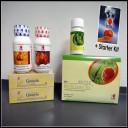 "DXN Dynamic Start Program ''C1"" kit: affordable and healthy"