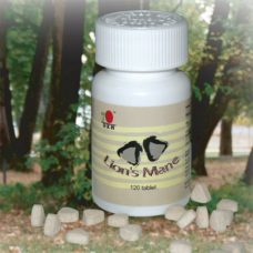 DXN Lion's Mane medicinal mushroom tablet is a natural fungus-product that enhances brain functions and relieves stress.
