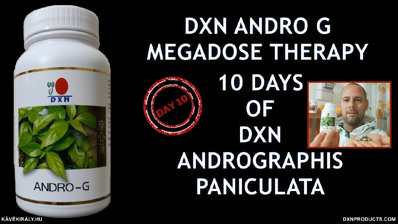 Megadosed Andrographis paniculata for 10 days