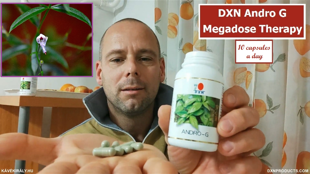 Green capsules of DXN Andrographis paniculata