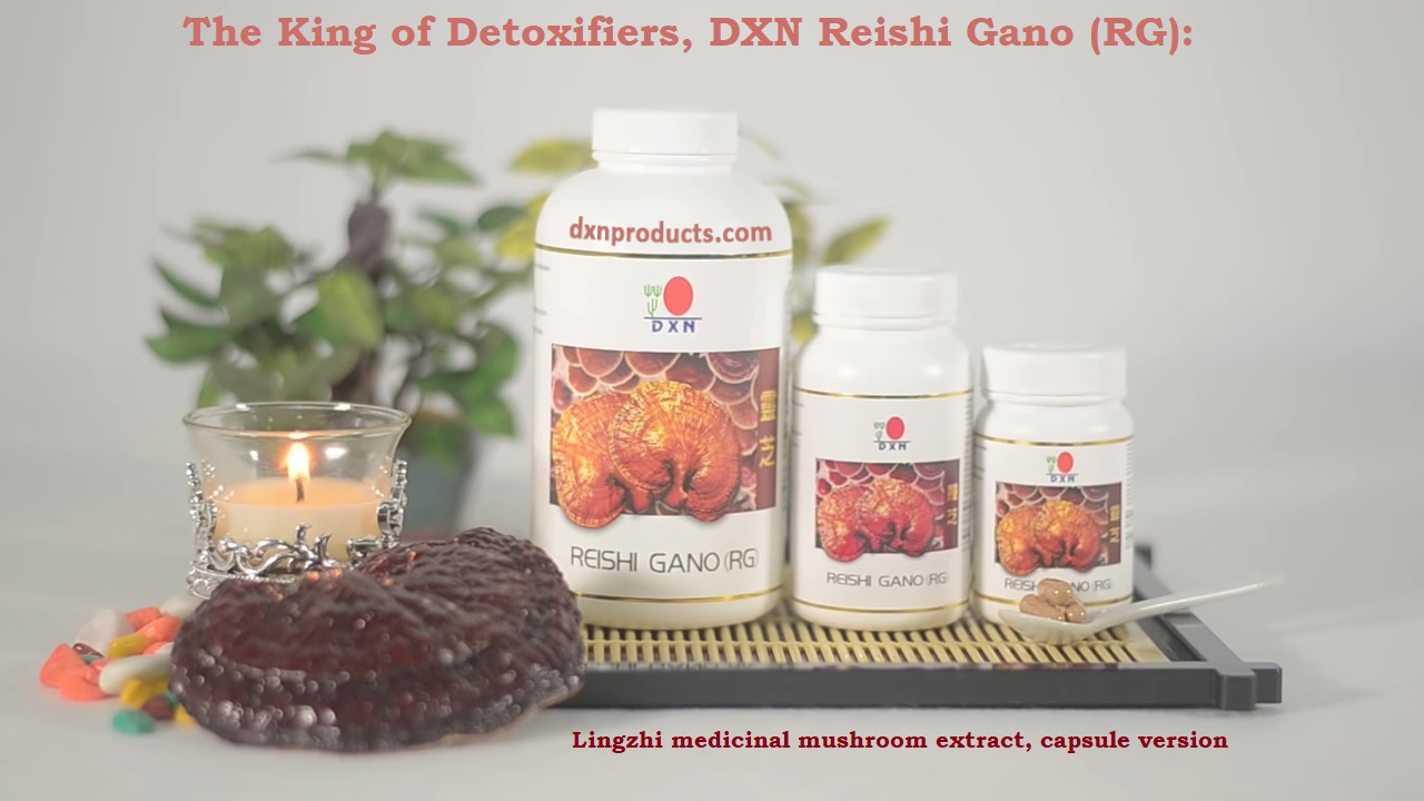 The King of Detoxifiers, DXN Reishi Gano (RG)