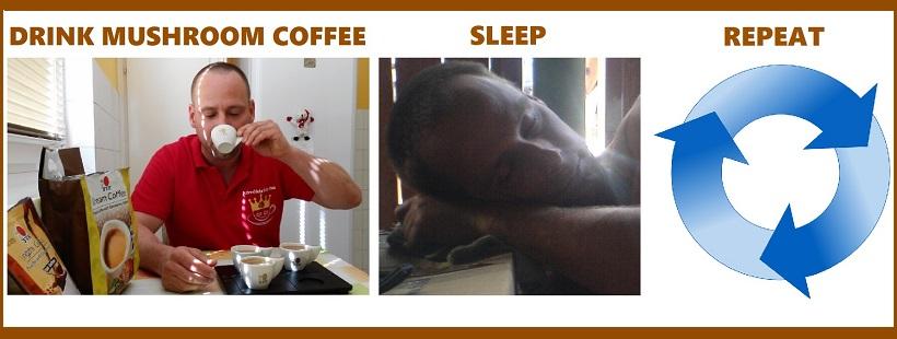 Drink DXN Ganoderma coffee, sleep, repeat