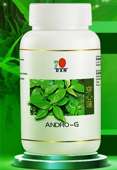 DXN Andro G Andrographis paniculata herbal extract: good during a flu pandemic