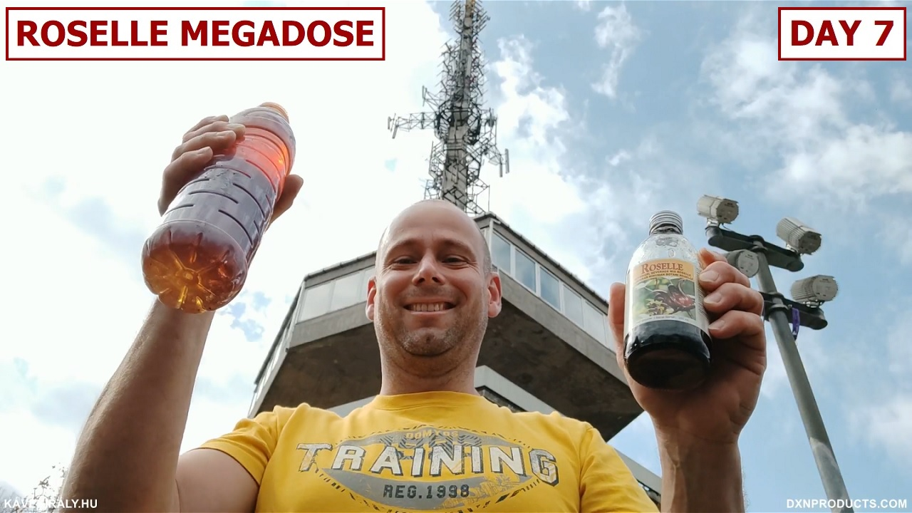 Drinking Megadose of DXN Roselle under Avasi Lookout Tower, Miskolc