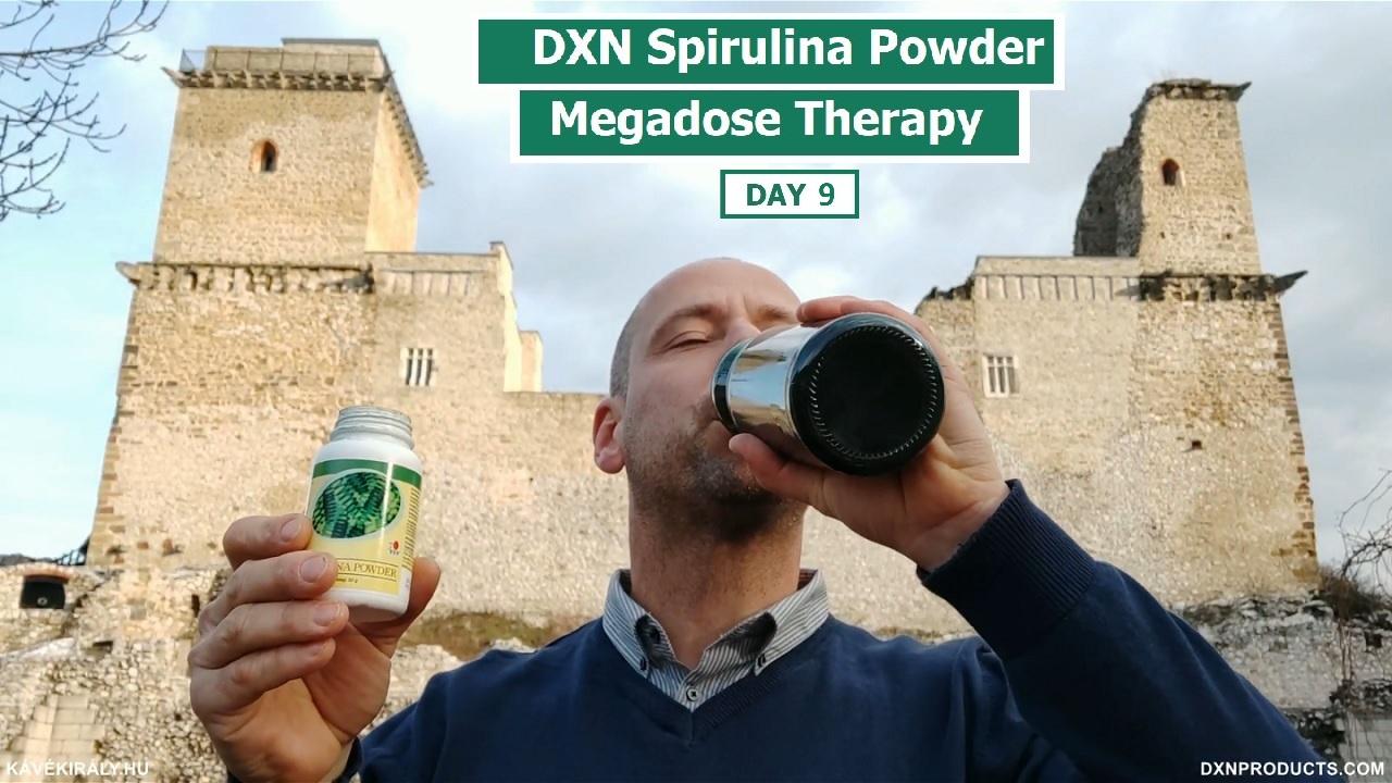 Diósgyőri vár és DXN Spirulina smoothie