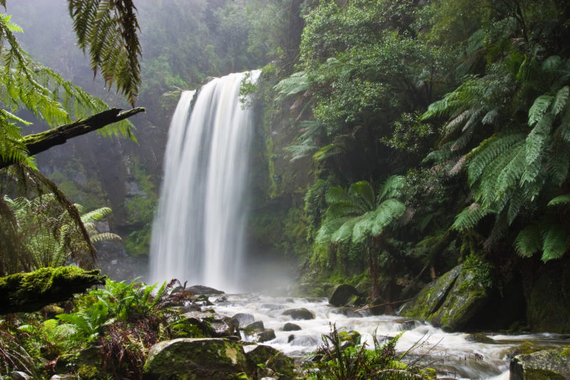 Oxygen rich environment in Australia with waterfall