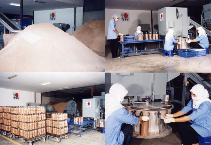 DXN Ganoderma factory workers